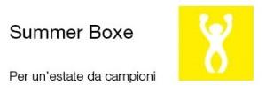 Summer Boxe 2017 - Logo